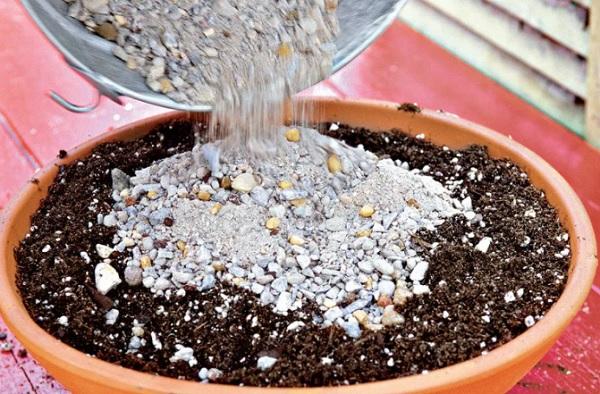 Приготовление грунта для крассулы