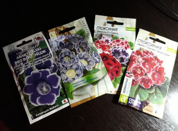 Упаковки с семенами глоксинии